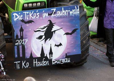 20170227_umzug_burgau_rf_621